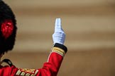 during Trooping the Colour {iptcyear4}, The Queen's Birthday Parade at Horse Guards Parade, Westminster, London, 9 June 2018, 10:28.