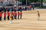 during Trooping the Colour {iptcyear4}, The Queen's Birthday Parade at Horse Guards Parade, Westminster, London, 9 June 2018, 10:30.