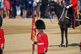 during Trooping the Colour {iptcyear4}, The Queen's Birthday Parade at Horse Guards Parade, Westminster, London, 9 June 2018, 10:47.
