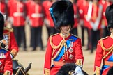 during Trooping the Colour {iptcyear4}, The Queen's Birthday Parade at Horse Guards Parade, Westminster, London, 9 June 2018, 11:05.