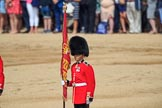 during Trooping the Colour {iptcyear4}, The Queen's Birthday Parade at Horse Guards Parade, Westminster, London, 9 June 2018, 11:07.