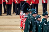 during Trooping the Colour {iptcyear4}, The Queen's Birthday Parade at Horse Guards Parade, Westminster, London, 9 June 2018, 11:16.