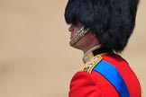 during Trooping the Colour {iptcyear4}, The Queen's Birthday Parade at Horse Guards Parade, Westminster, London, 9 June 2018, 11:17.