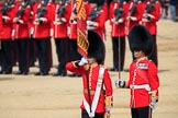 during Trooping the Colour {iptcyear4}, The Queen's Birthday Parade at Horse Guards Parade, Westminster, London, 9 June 2018, 11:21.