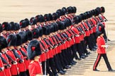 during Trooping the Colour {iptcyear4}, The Queen's Birthday Parade at Horse Guards Parade, Westminster, London, 9 June 2018, 11:38.