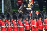 during Trooping the Colour {iptcyear4}, The Queen's Birthday Parade at Horse Guards Parade, Westminster, London, 9 June 2018, 12:01.